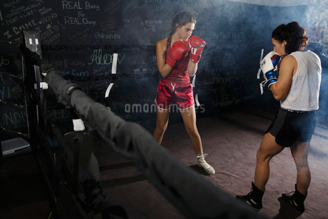 Tough female boxers training in boxing ringの写真素材 [FYI02334021]
