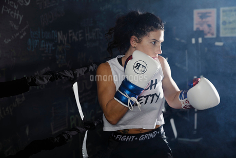 Determined, tough female boxer training in boxing ringの写真素材 [FYI02334025]