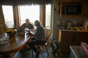 Senior couple paying bills at laptop in kitchenの写真素材 [FYI02334479]