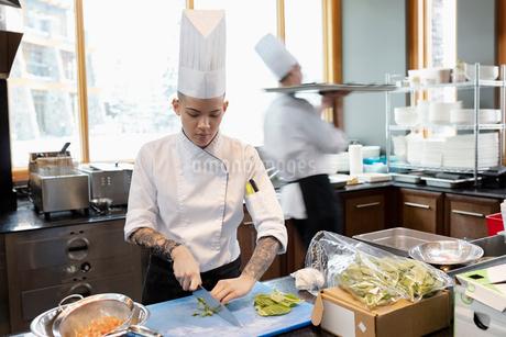 Female prep cook cutting lettuce in restaurant kitchenの写真素材 [FYI02334914]