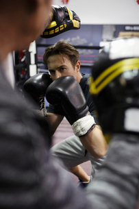 Focused male boxer training in gymの写真素材 [FYI02334922]
