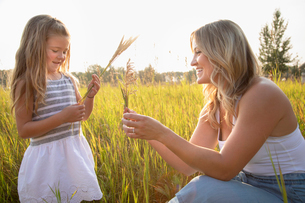 Mother and daughter holding wheat stalks in sunny, rural fieldの写真素材 [FYI02335048]