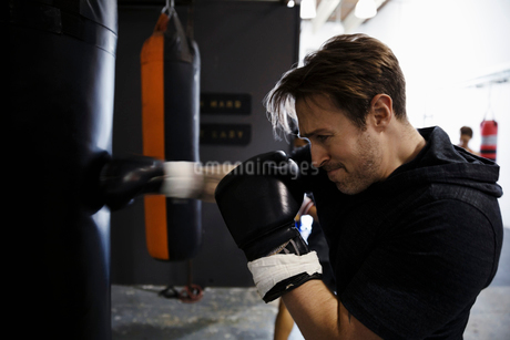 Tough male boxer training, boxing at punching bag in gymの写真素材 [FYI02335225]