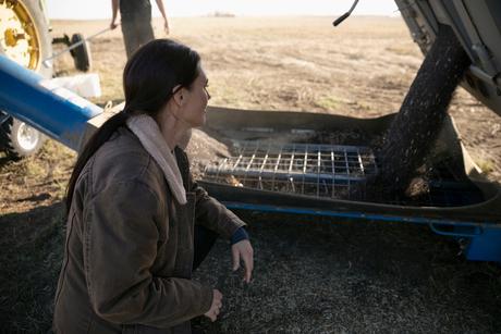 Female farmer watching trailer emptying soilの写真素材 [FYI02335725]