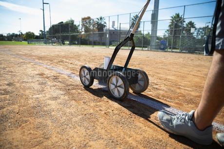 Man lining sunny baseball fieldの写真素材 [FYI02336170]