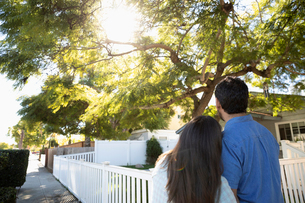 Latinx couple looking up at sunny tree in front yardの写真素材 [FYI02336735]