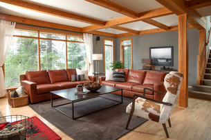 Home showcase interior living room with leather sofas and cowhide armchairの写真素材 [FYI02337026]