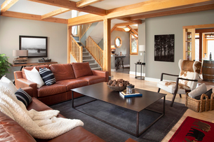 Home showcase interior living room with leather sofas and cowhide armchairの写真素材 [FYI02337250]
