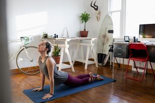 Young Latinx woman practicing yoga upward facing dog pose in apartmentの写真素材 [FYI02337343]
