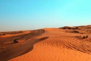 Desert, Emirate of Sharjah, United Arab Emirates, Asiaの写真素材 [FYI02337899]