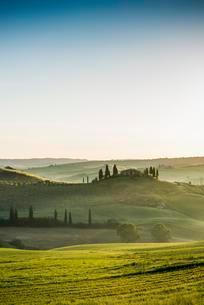 Landscape with hills and farmstead with cypress treesの写真素材 [FYI02337997]