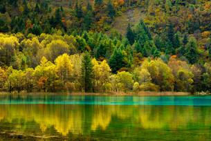 Five Flower Lake in autumnal environment, Jiuzhaigouの写真素材 [FYI02338106]