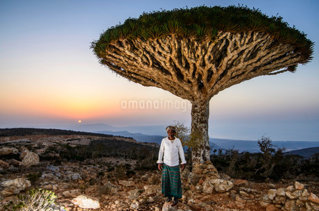 Yemenite man standing in front of a Socotra Dragon Tree orの写真素材 [FYI02338205]
