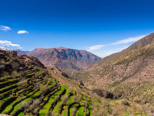 Atlas Mountains, Anammer, Ourika Valleyの写真素材 [FYI02338231]