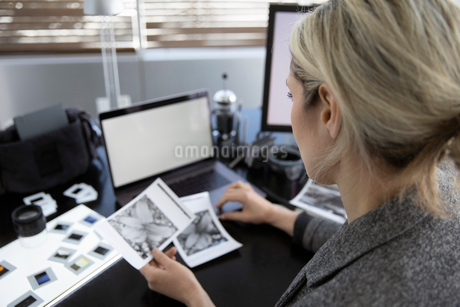 Female photographer reviewing negatives in officeの写真素材 [FYI02338314]