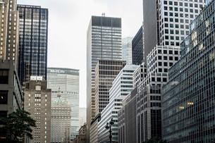 Office towers on Park Avenue, Manhattan, New York City, Newの写真素材 [FYI02338433]