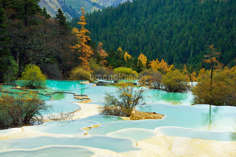 Lime terraces with lakes in autumnal environment, Huanglongの写真素材 [FYI02338438]