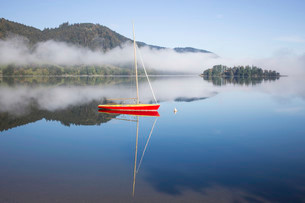 Boat on the lake, morning mist, Schliersee Lakeの写真素材 [FYI02338581]