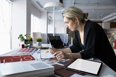 Female interior designer working in officeの写真素材 [FYI02338647]