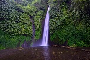Waterfall of Munduk, Bali, Indonesia, Asiaの写真素材 [FYI02338716]