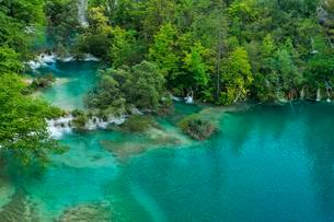 Lower lakes with small waterfalls, Plitvice Lakes Nationalの写真素材 [FYI02338756]