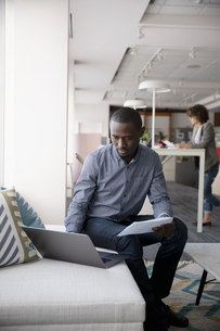 Businessman working in officeの写真素材 [FYI02338781]