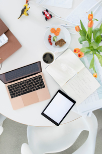 Businesswoman working from homeの写真素材 [FYI02338803]