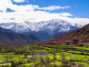 View of the Atlas Mountains, Ourika Valley, Atlasの写真素材 [FYI02338890]