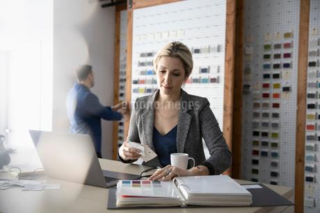Female interior designer looking at paint swatches in design studioの写真素材 [FYI02338948]