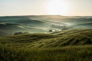 Landscape with hills, morning light, Val d'Orcia, UNESCOの写真素材 [FYI02338959]