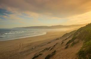 Sandy beach, coast, Indian Ocean, Wilderness, Western Capeの写真素材 [FYI02338966]