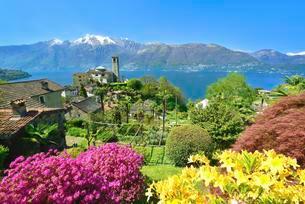 Sant'Abbondio on Lake Maggiore, Gambarogno, Ticinoの写真素材 [FYI02338967]