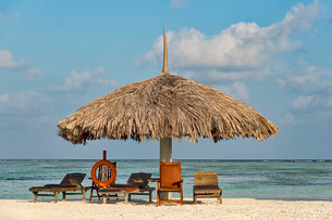 Parasol, sunbeds and a lifebuoy on the beach, Paradiseの写真素材 [FYI02339207]