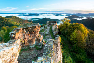 View of the Palatinate Forest from Wegelnburg Castleの写真素材 [FYI02339320]