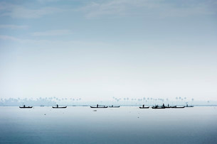 Cockle pickers with their boats, Vembanad Lake, Keralaの写真素材 [FYI02339397]