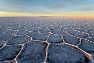 Honeycomb structure on Salar de Uyuni, salt flat, morningの写真素材 [FYI02339402]
