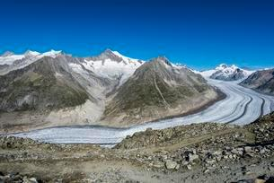 Great Aletsch Glacier, panoramic view in summer fromの写真素材 [FYI02339443]