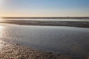 Evening mood in the Lower Saxon Wadden Sea National Park atの写真素材 [FYI02339458]