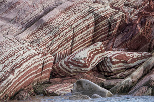 Limestone coloured red by iron and whitish-yellow dolomiteの写真素材 [FYI02339483]