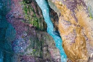 View from above, Partnach Gorge, Partnachの写真素材 [FYI02339516]