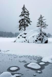 Frozen lake Hintersee in winter, Ramsau, Berchtesgadenの写真素材 [FYI02339533]