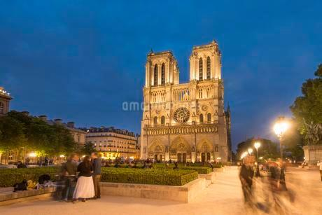 Notre Dame Cathedral at dusk, interior, western facade, Ileの写真素材 [FYI02339636]