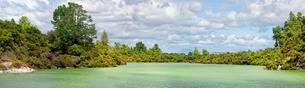Lake Ngakoro in Wai-O-Tapu thermal area, Waiotapu, Rotouaの写真素材 [FYI02339660]
