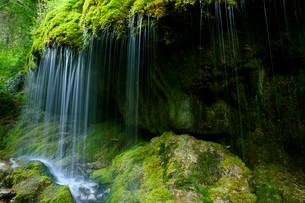 Mossy waterfall, Wutachschlucht gorge, Black Forestの写真素材 [FYI02339666]