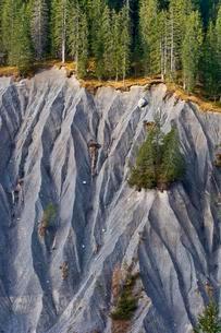 Slipped slope, landslide, erosion slope, Vorarlbergの写真素材 [FYI02339718]