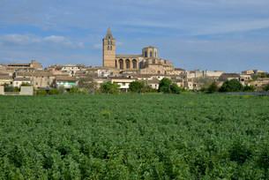 Parish church Nostra Senyora dels Angels, Sineu, Majorcaの写真素材 [FYI02339764]