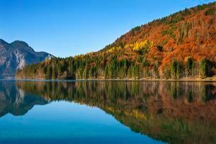 Autumn landscape, Walchensee lake, Jachenau, Bavaria, Upperの写真素材 [FYI02339772]