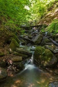 Bridge over Heslacher Wasserfalle, Heidenklinge Valleyの写真素材 [FYI02339808]