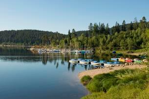 Morning atmosphere with rowboats, Schluchsee lake, Blackの写真素材 [FYI02339873]
