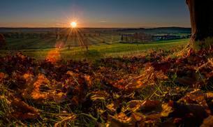 Sunrise over Mindeltal, autumn leaves in front, Mindelheimの写真素材 [FYI02339892]